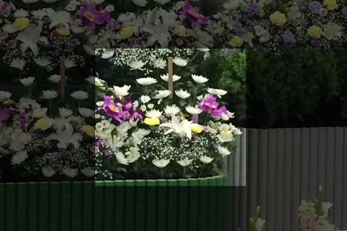 小さなお葬式 供花