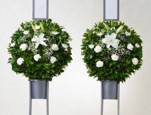樒(しきみ)供花